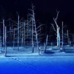 幻想的な景色 【白金 青い池】